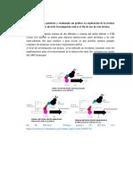 Trabajo Bioquimica de Bioinformatica