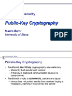Public-Key Cryptography thesis