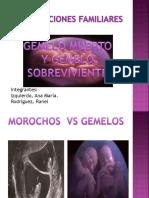 Constelaciones-Familiares-Gemelos.pdf