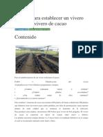 8 Pasos Para Establecer Un Vivero de Cacao Vivero de Cacao