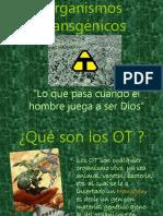 Organismos Transgenicos
