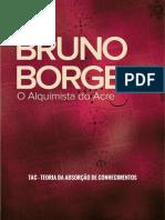 teoriadaabsorçãodeconhecimentos-brunoborges