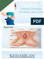 fisologi kehamilan