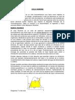 INFORME CICLO RANKINE.docx