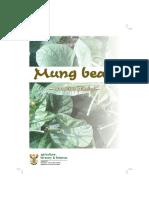 MbeanpGUDELINS.pdf