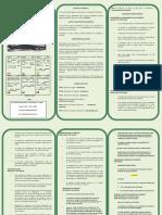 Triptico - Euco PDF