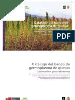 producion de quinua