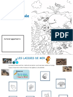 COO.pdf