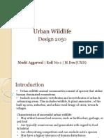 1.Mudit Aggarwal- Urban WIldlife