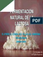 FermentacionLactosa.pdf