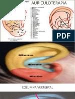 Auriculoterapia Aplicada