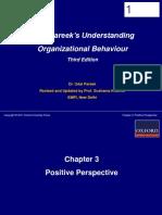 Chap 3 Positive Perspective