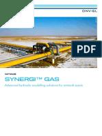 Synergi Gas Brochure.pdf
