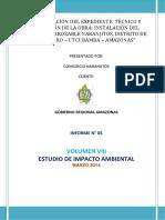 Informe Final EIA - Rev 2.0