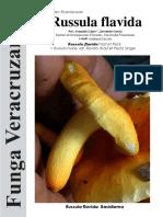 180 Russula Flavida