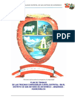 Plan de Trabajo Carretera Antaparco