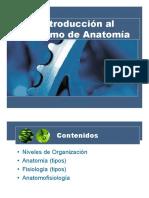 1. Introducción Anatomía