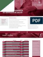 05 - USMP - Maestria en Gerencia de Salud