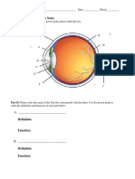 eye function notes