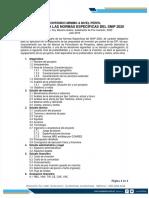 Contenido minimo para proyectos de inversion publica normas snip2020