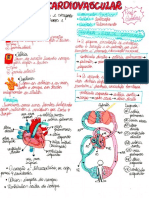 Resumo Sistema Cardiovascular