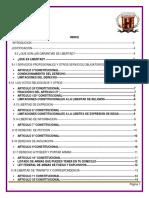 Derechos Humanos y Garantias de Libertad 070319.Docx Bueno