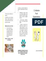 Triptico Cuidados Post Operatorios PDF