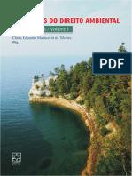 296505542-SILVEIRA-Principios-do-Direito-Ambiental.pdf
