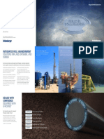 Integrated well abanndonent