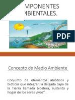 COMPONENTES AMBIENTALES (2)