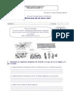 Guia-de-Celulas-5-Basico.doc