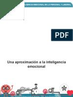 Una Aprox a La Inteligencia Emocional