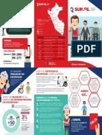 Tript_Personas con Discapacidad.pdf