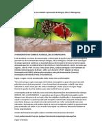 A Homeopatia Pode Ajudar No Combate e Prevenção Da Dengue, Zika e Chikungunya