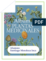 Album de Plantas Medicinales SANTI