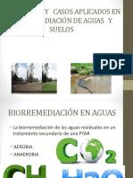 Biorremediacion Para Suelo y Agua