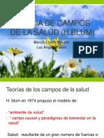 TEORIA DE CAMPOS DE LA SALUD (H profe.pptx