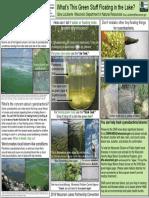 Cyanobacteria ID Jar & Stick Tests LaLiberte WPLC Poster 2019 Handout