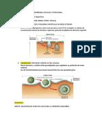 Membrana Celular e Citoplasma