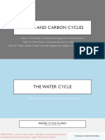 A-Level Water and Carbon Cycles