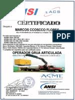 Certificado Operador grua