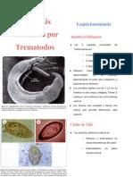 Trematodos Tisulares - Resumen Libro de Botero