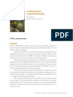Resumo - O Enigma do Capital .pdf