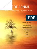 p222-8863-revista-10 (1)