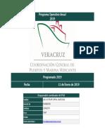 POA 2019 APIVER(en tramite de registro).pdf
