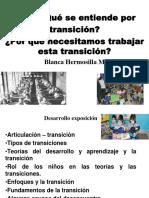 Transicion Bca Pt