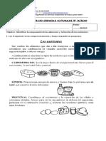 Guía Tipo de Nutrientes 5°