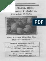 El Cultivo de Calabaza, Victoria, Bolo o Mejicano