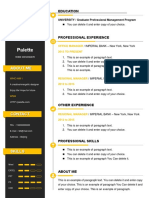 4Colorful Resume-WPS Office
