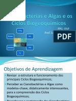 Cianobactérias e Algas e Os Ciclos Biogeoquímicos_2014